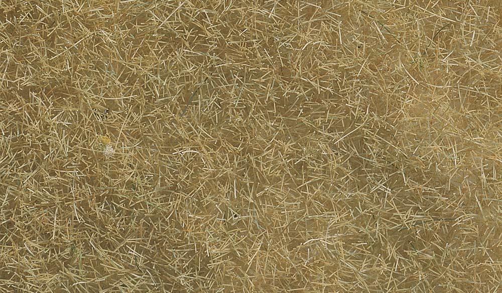 NOCH 07091 Wildgras 6 mm 0//H0//TT//N beige