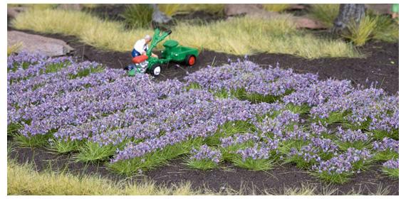 noch 07136 lavendel streifen und b schel landschaft ausschm ckung pflanzen str ucher hecken. Black Bedroom Furniture Sets. Home Design Ideas